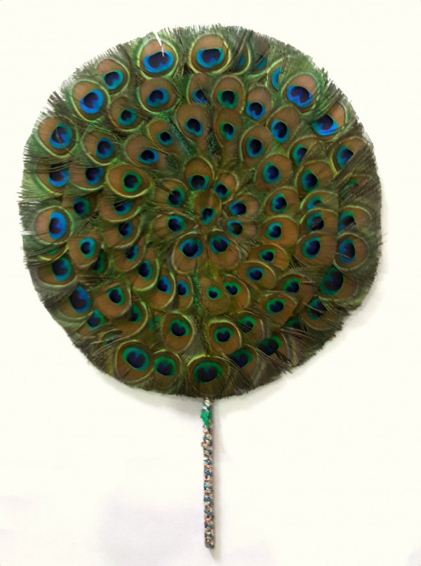 Peacock Fan 15 inch size